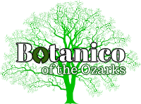 Botanico of the Ozarks